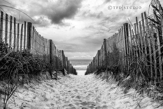 Landscape Photography - Highway 30A, Florida - Seaside - Pathway to Bliss - Black and White