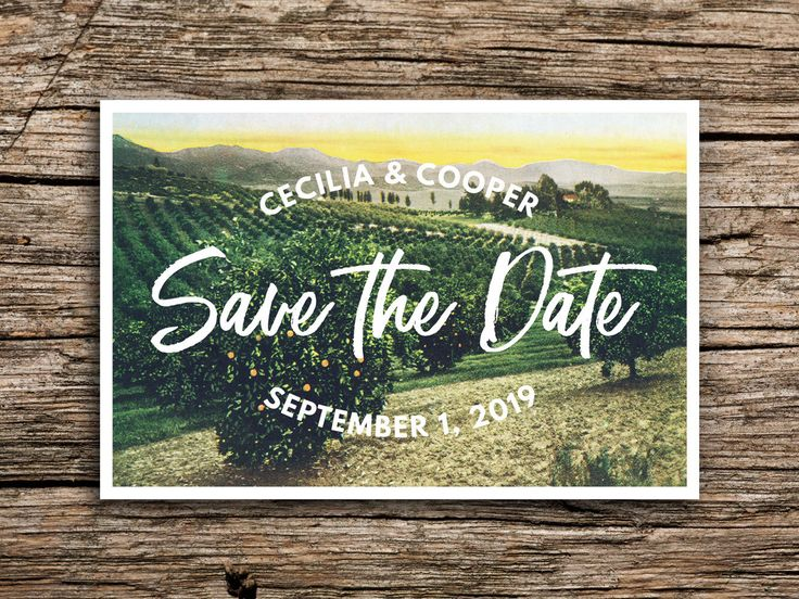 Wine Country Postcard Save the Date // Napa Sonoma Save the Dates Vineyard Grapes Hills California Wedding Winery Wedding Postcards Green by factorymade on Etsy https://www.etsy.com/listing/267297389/wine-country-postcard-save-the-date-napa