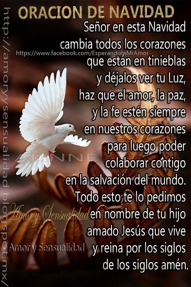 Oración  Padre amado y misericordioso, te doy gracias por todo lo que nos das a pesar de no merecerlo, gracias señor especialmente por tu ...