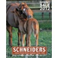 Schneiders - Sign up for our free catalog.