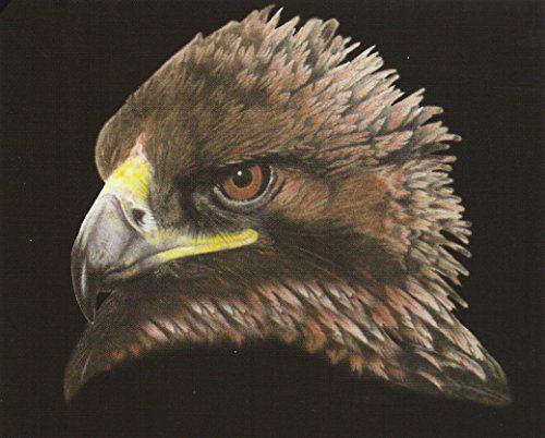 American Bald Eagle Bird Picture Wall Decor Art Print Pos... https://www.amazon.com/dp/B00Y26Z6UC/ref=cm_sw_r_pi_dp_x_fB0zybRSKEPDK