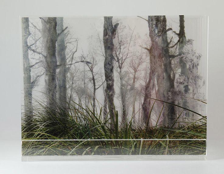 Pastos- fotografía multicapa- Laura Messing