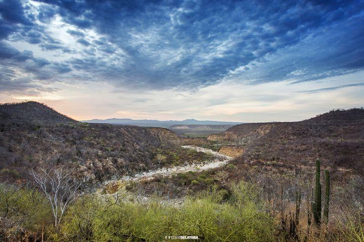 Beautiful landscape in the sierra of Los Cabos   #josafatdelatoba #cabophotographer #mexico #bajacaliforniasur #loscabos #sanjosedelcabo #sierra #landscape
