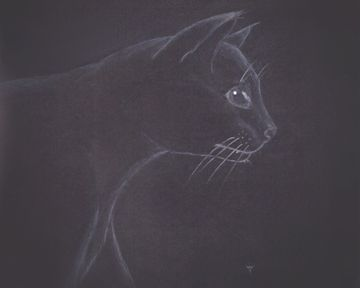 Here is my latest work, Midnight Hunter. Come see this and more fabulous art at ravenfabal.com