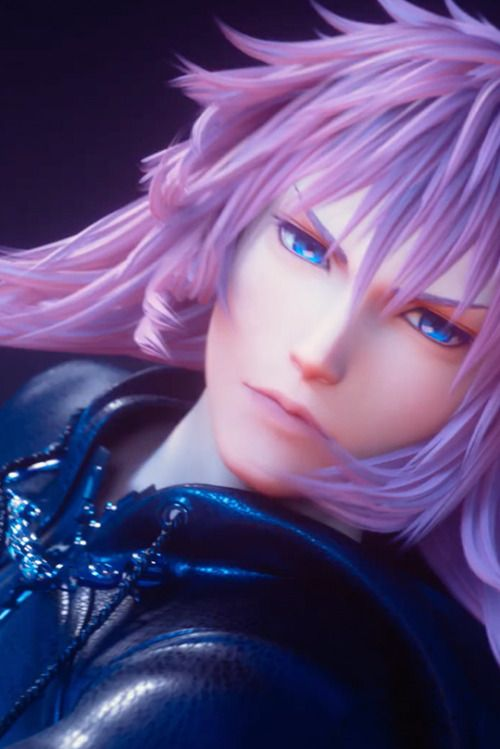 Marluxia Obsessed With Pinning Kingdom Hearts Kingdom Hearts