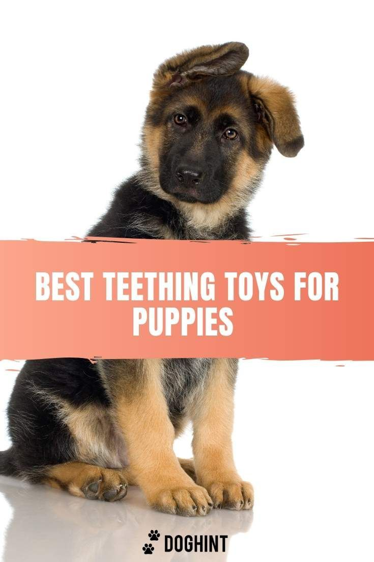 Indestructible Dog Toys Rubber Plush Squeaky And More Dog Toys Indestructable Tough Dog Toys Puppy Teething