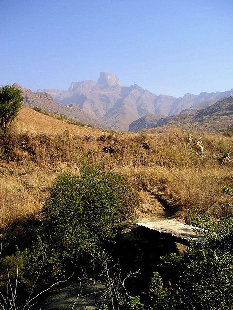 Royal Natal National Park. KwaZulu Natal, South Africa