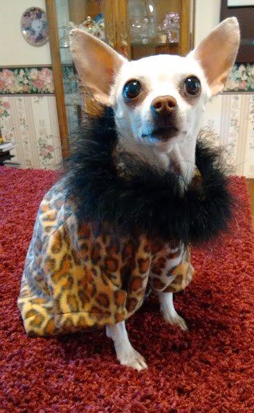 Check out this item in my Etsy shop https://www.etsy.com/listing/286805311/fleece-n-fur-cheetah-print-shirt-cheetah