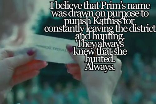 The game never ended.President snow is still torturing us by making all hunger game fans realize all these things after the series ended