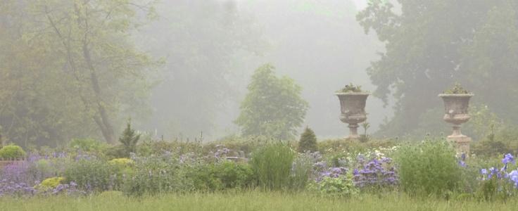 Morning Mist - Gardens: Garden Ideas, Favorite Places, Neusa Meloti, Misty Moments