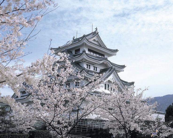 Kawashima Castle, Tokushima - Japan