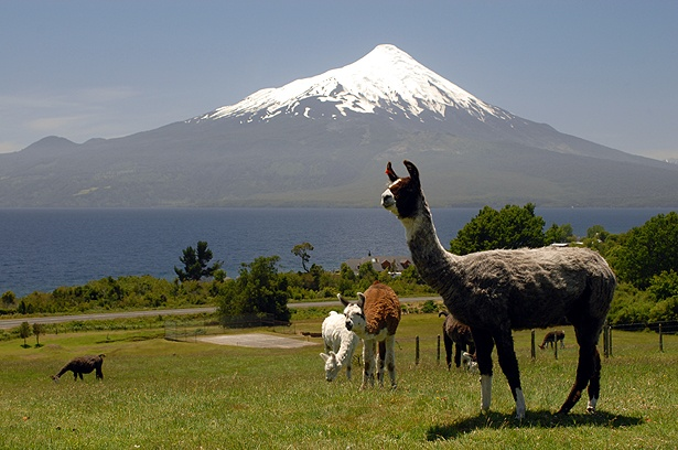Chile, Lake district ~ someday I will go back