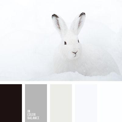 Цветовая палитра №2560 | IN COLOR BALANCE