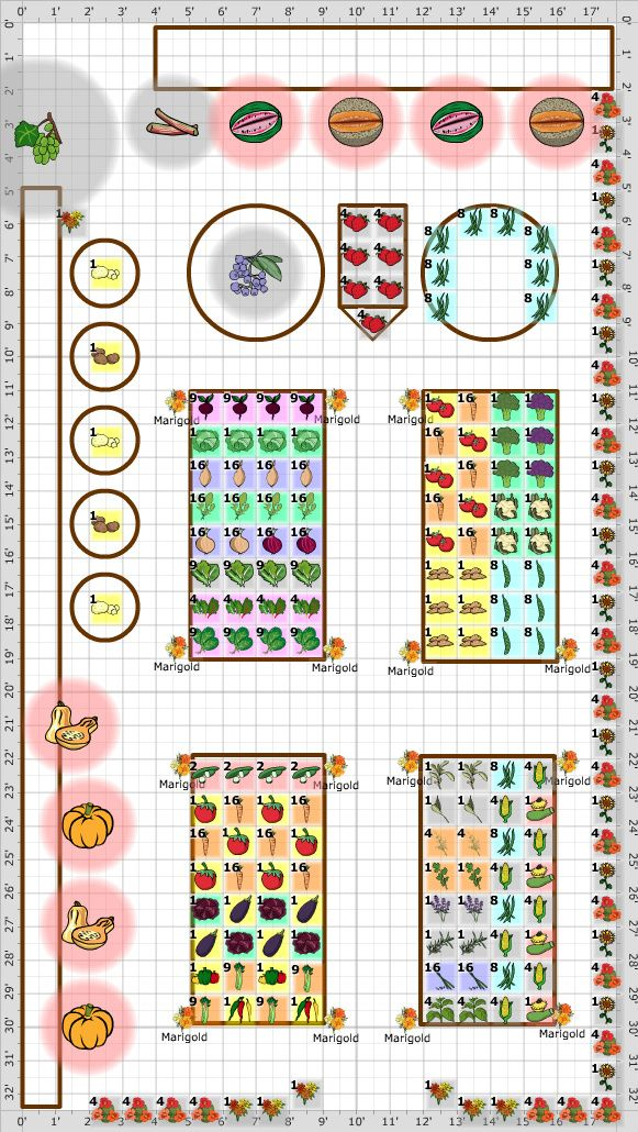 Garden Plan - 2014: Backyard Garden, a lovely example of SFG with potatoes in pots, sunflowers and nasturtiums going next to each other alternatively to give both ground cover and height. Wonderfully arranged beds and a pumpkin and squash patch, a beautiful plan and look how much they are going to get from such a small area.