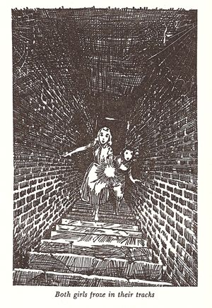 I just love the Nancy Drew illustrations :D