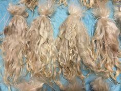 Куклы и игрушки ручной работы. Заказать Волосы для кукол белые НЕМЫТЫЕ, коза (пряди/кудри/локоны). Татьяна Хопёрский пух…