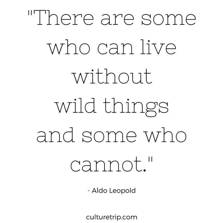 """There are some who can live without wild things and some who cannot."" -Aldo Leopold"