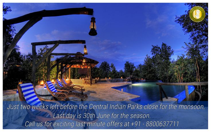 Just two weeks left before the Central Indian Parks close for the monsoon. Last day is 30th June for the season. Call us for exciting last minute offers at +91 - 8800637711 or Email us at sales@pugdundeesafaris.com