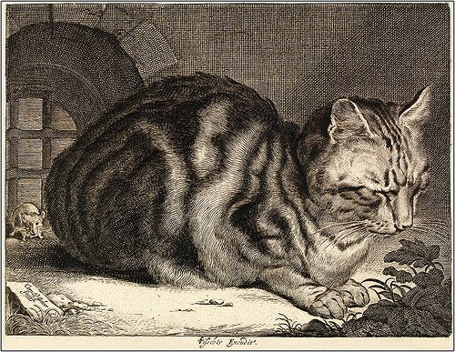 "Cornelis de Visscher (Dutch, 1586-1658). ""Cat Sleeping"" or ""The Large Cat."" 1657. Engraving."