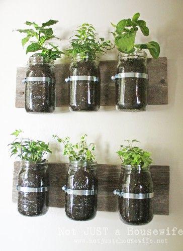 DIY mason jar herb garden. fab idea
