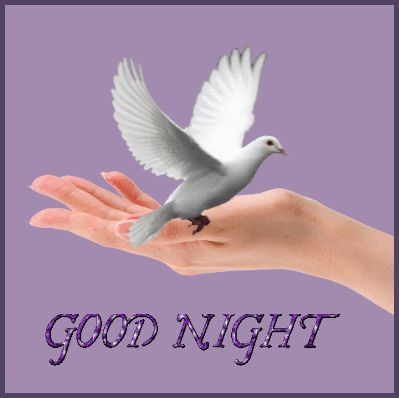 Good night - A collection of CLICK ON THE PICTURE (gif) AN WATCH IT COME TO LIFE. ...♡♥♡♥Love it