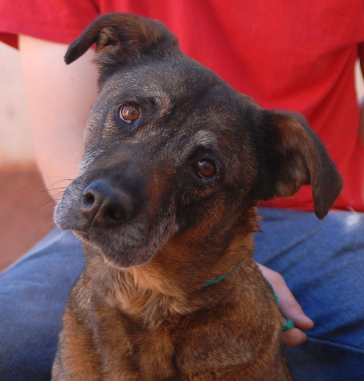 Celia Pleads For A Stable, Loving Home Where She Will