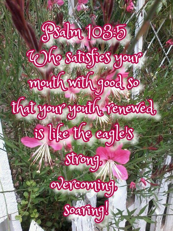 Psalm 103:5 Renewed strength