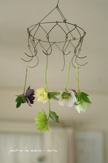 What a simple and amazing way to display randomly picked flowers.  (no tutorial - just a pretty pic for inspiration)   :)