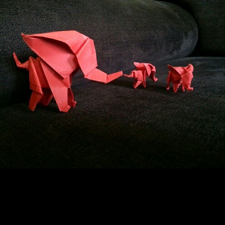 Little red - baby red _ elephant by 'delice'