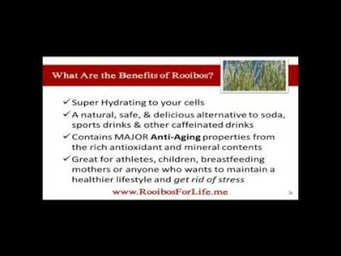 The Benefits of Rooibos