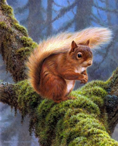 Wildlife artist Andrew Hutchinson
