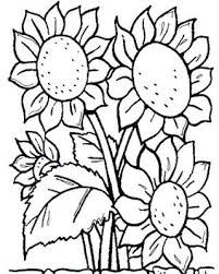 Image Result For Sunflower Stencil Printable