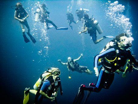 Thailand dykning på Ko Tao och Similian.