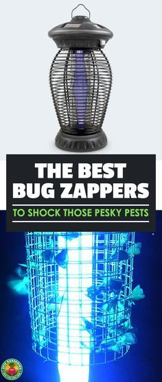 Are bugs driving you buggy? You need the best bug zapper out there to wipe out these invaders! Read our complete buyer's guide and find the best bug zapper for your needs. #pests #gardening #epicgardening