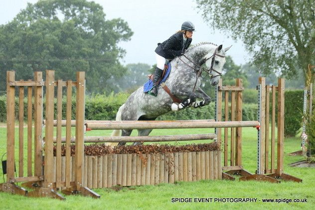 Stunning Irish Mare Sports Horses for sale in Kent, South East!  Jazz is a very well bred Irish mare by Silvano. She has very flashy movement and a jump that shows good technique and loads of scope. This mare has competed from 90cm up to 1.10m under BS rules with an amateur lady rider and is competitive against the clock but also very careful.