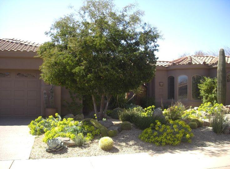 86 best Landscape for Phoenix House images on Pinterest Backyard