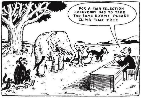 How standardized testing works: Educationsystem, Judges, Standards Test, Trees, So True, Albert Einstein Quotes, Albert Einstein, Education System, Teacher