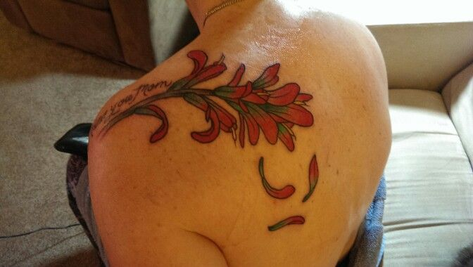 118 best images about indian paintbrush on pinterest for Chris martin tattoos