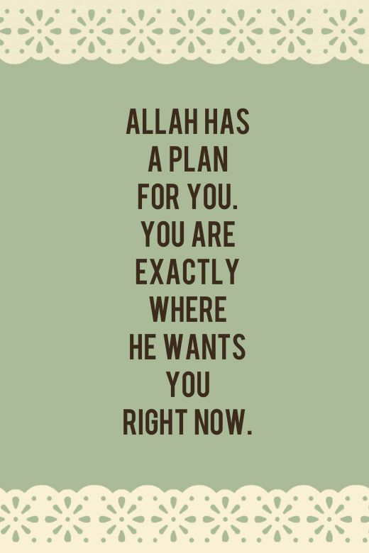Peace Be Upon You - Trust Allah's plan.
