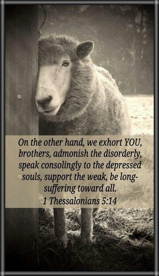 1 Thessalonians 6:14
