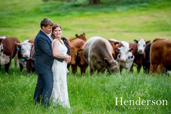 Country weddings, Down South Weddings, Bunbury Photographer, Edith Valley Retreat