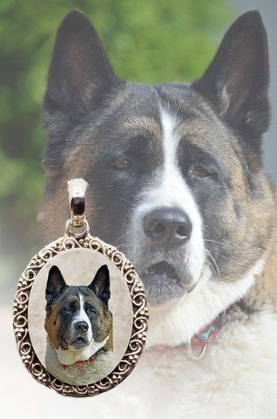 Akita Necklace.  This is photo jewelry and I make them using your dogs photo so it is very special! #akita #akitalover #simplyitalydesigns #doglovers #doglovergifts #dogs #photojewelry #photokeepsake #keepsake #dogproducts #doggifts