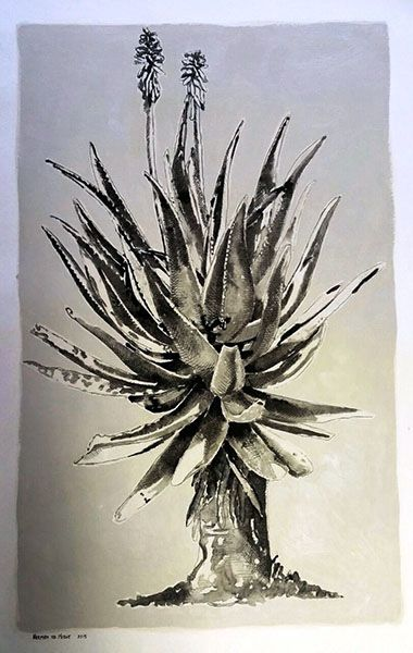 Title: Aloe I, Le Franschhoek Hotel Medium: Mixed Media on Stretched Canvas:  Chalk Pastel, Drawing Ink, Oil paint Size: 1189 x 841mm