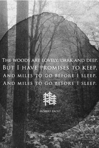 robert frost stopping by the woods pdf
