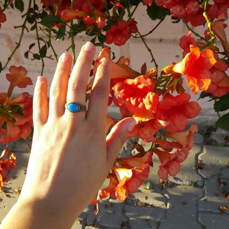 Mis kokulu, kadife dokulu dokunuş#hand