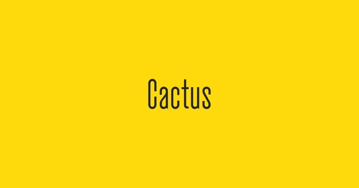 Cactus is a typeface designed by Gareth Hague, and is available for Desktop, Web, App, ePub, and Server. Try, buy and download these fonts now!