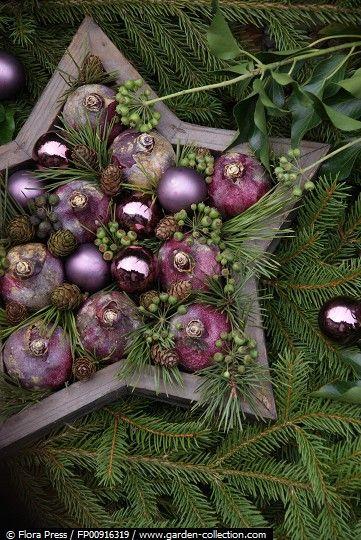 Stjerne med hyacinter og kogler
