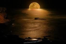 Image result for cool night pictures