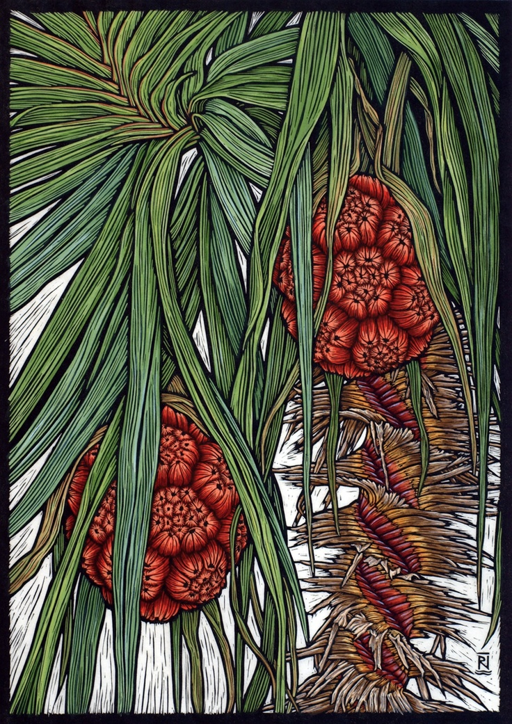 """Kakadu Pandanus"" by Rachel Newling. http://rachelnewling.com/ Tags: Linocut, Cut, Print, Linoleum, Lino, Carving, Block, Woodcut, Helen Elstone, Trees, Leaves, Foliage, Fruit, Exotic."