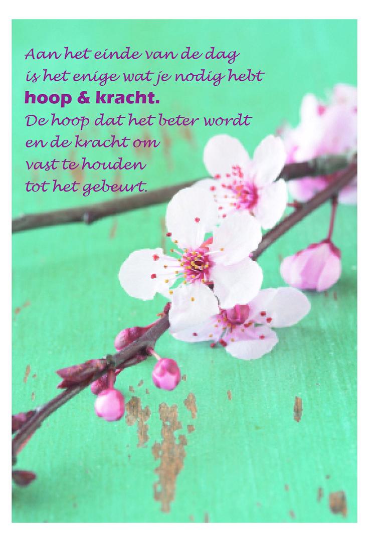 Aan het einde van de dag is het enige wat je nodig hebt hoop & kracht. De…